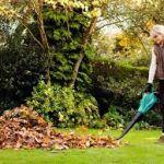 Как выбрать пылесос-воздуходувку. Выбор садового пылесоса-воздуходувки. Что такое воздуходувка. Выбор при покупке пылесоса-воздуходувки